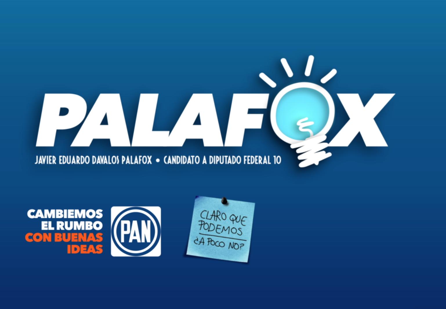 Videos para Campaña Palafox